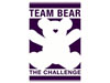14_CM_Charity Logos__0160_Bear Necessities Pediatric Cancer Foundation