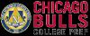 Logo_Chicago-Bulls-College-Prep