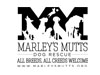 2015__0033_Marley's Mutts